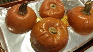 pumpkin - done baking