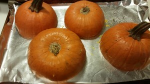 pumpkin - ready to bake