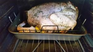 turkey - upside down in oven