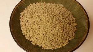 turkey and lentils - lentils